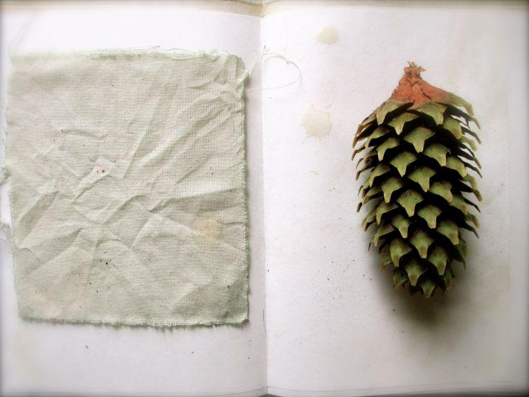 Nettle calico sketchbook