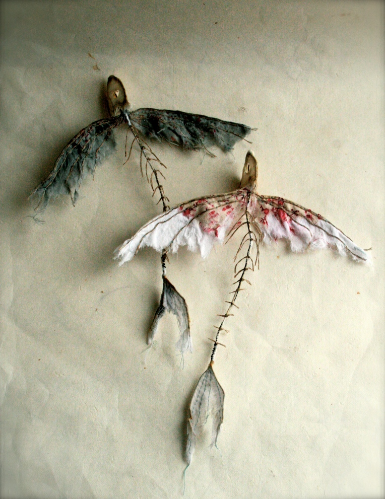 Flying fish skeletons