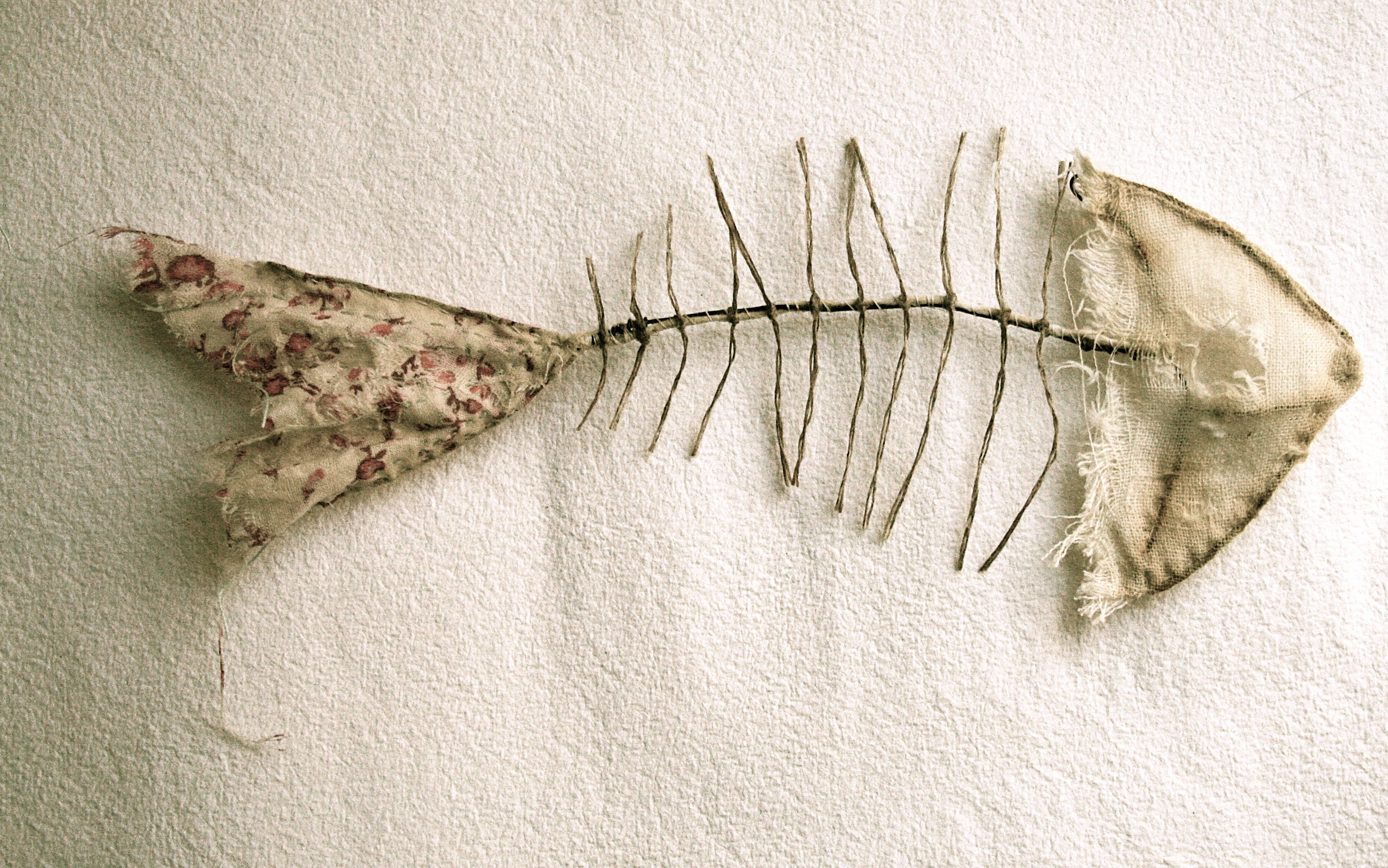 Fish skeletons the pale rook for What does it mean when your sperm smells like fish